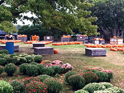 Fall season at Anderson Orchard in Mooresville, Indiana