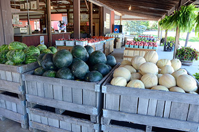 Picture of fresh fruits & vegetables at Anderson Apple Orchard in Indiana