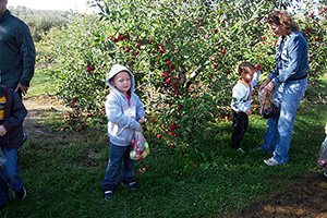 Anderson Orchard Field Trips Mooresville Indiana
